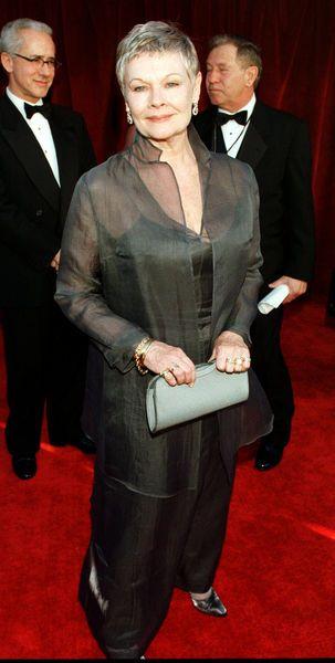 Judy Dench Red Carpet Dresses
