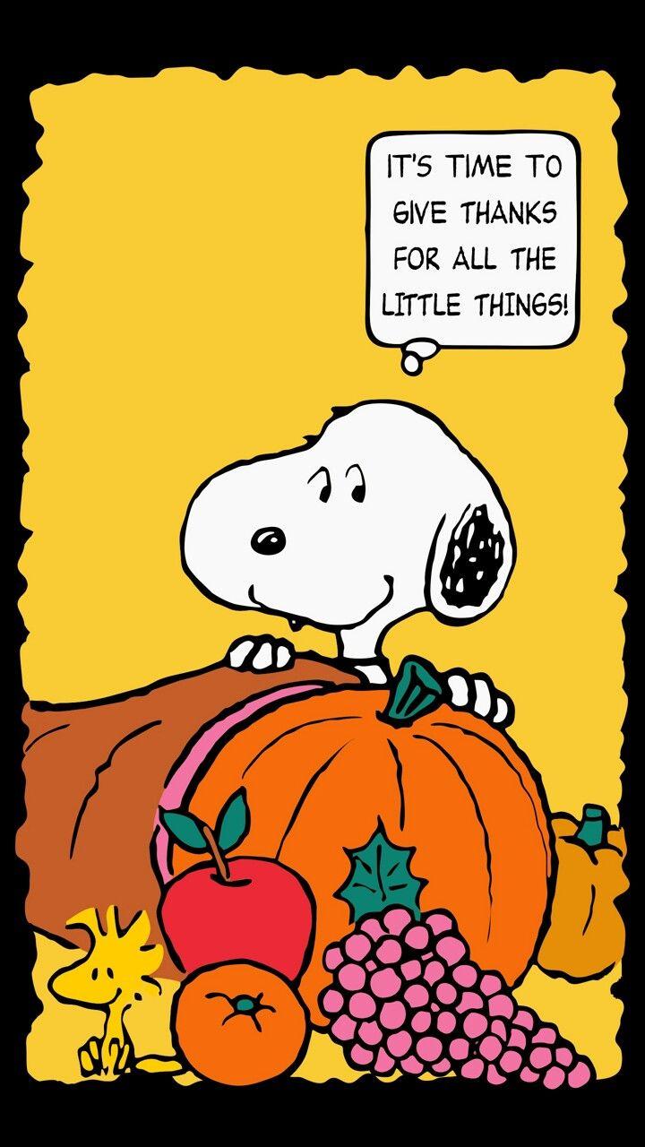Amen!!!!! | Charlie Brown\'s World, Snoopy!!!!! | Pinterest ...