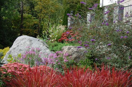 Beautiful Japanese Blood Grass Border By Mary Liz Campbell Landscape Design Flora Hillside Garden Japanese Garden Design Landscaping With Boulders