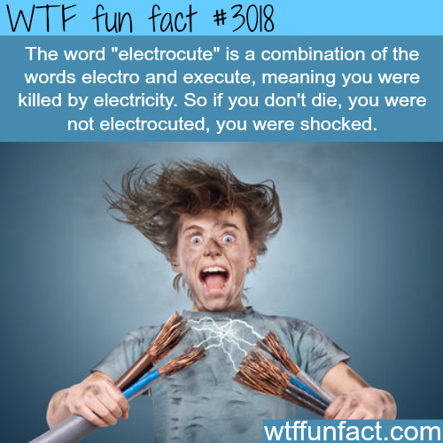 The difference of being electrocuted and getting shocked - WTF fun facts