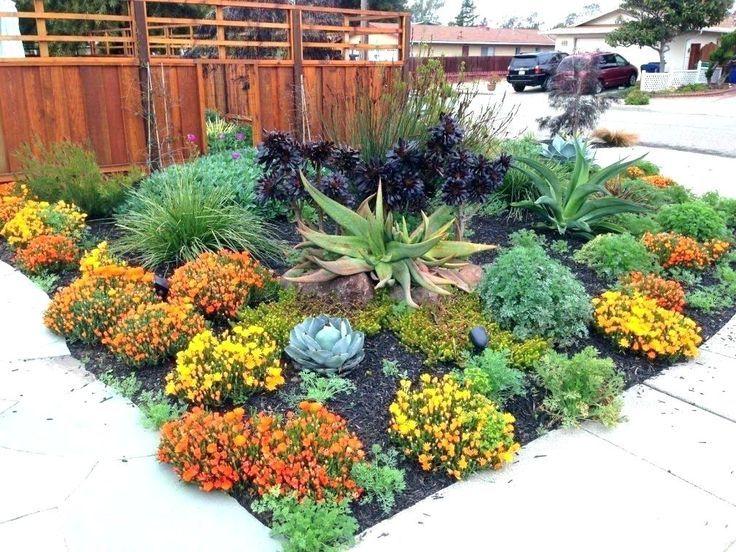 Drought Tolerant Landscape Front Yard Drought Tolerant Landscaping Ideas Elegant With Images Drought Tolerant Landscape Front Yard Drought Tolerant Garden Drought Resistant Landscaping