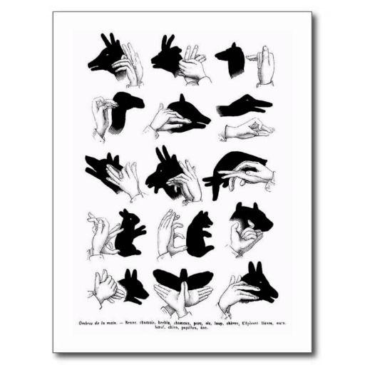 Hand Shadow Animals Vintage Kitsch Illustration Postcard