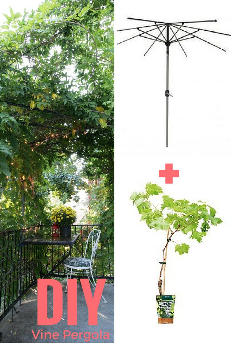 fabriquer une pergola avec un vieux parasol la vigne parasol et pergola. Black Bedroom Furniture Sets. Home Design Ideas
