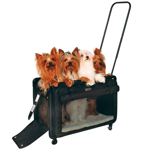 Pet On Wheels Pet Carrier Pet Carrier Pinterest Pet Carriers