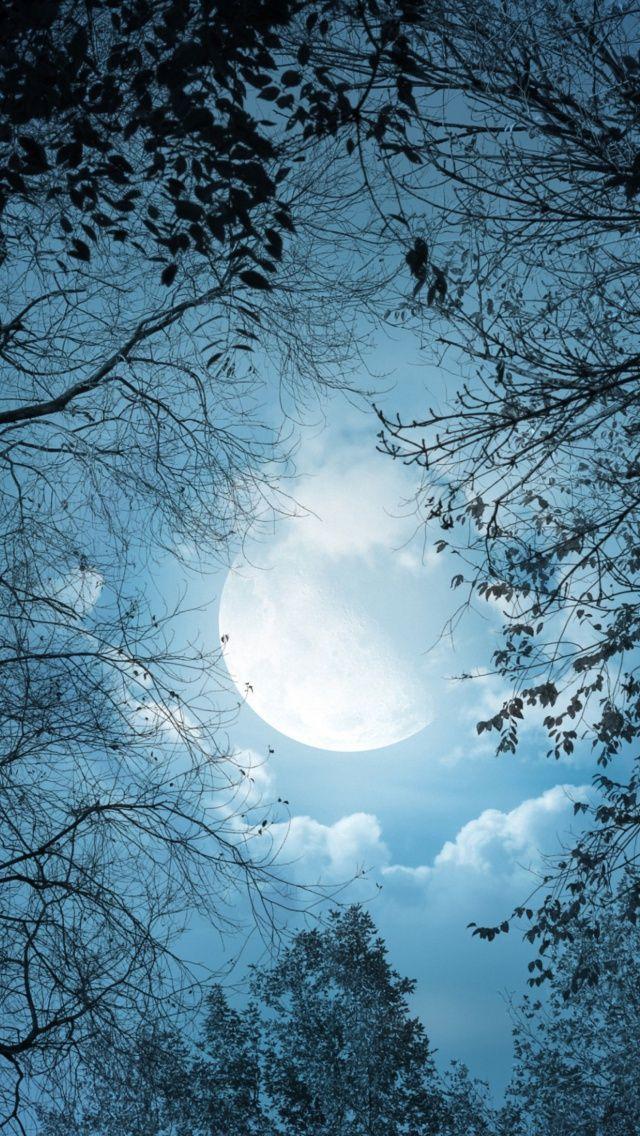 iPhone Night Sky Moon Bing images Moon time, Beautiful