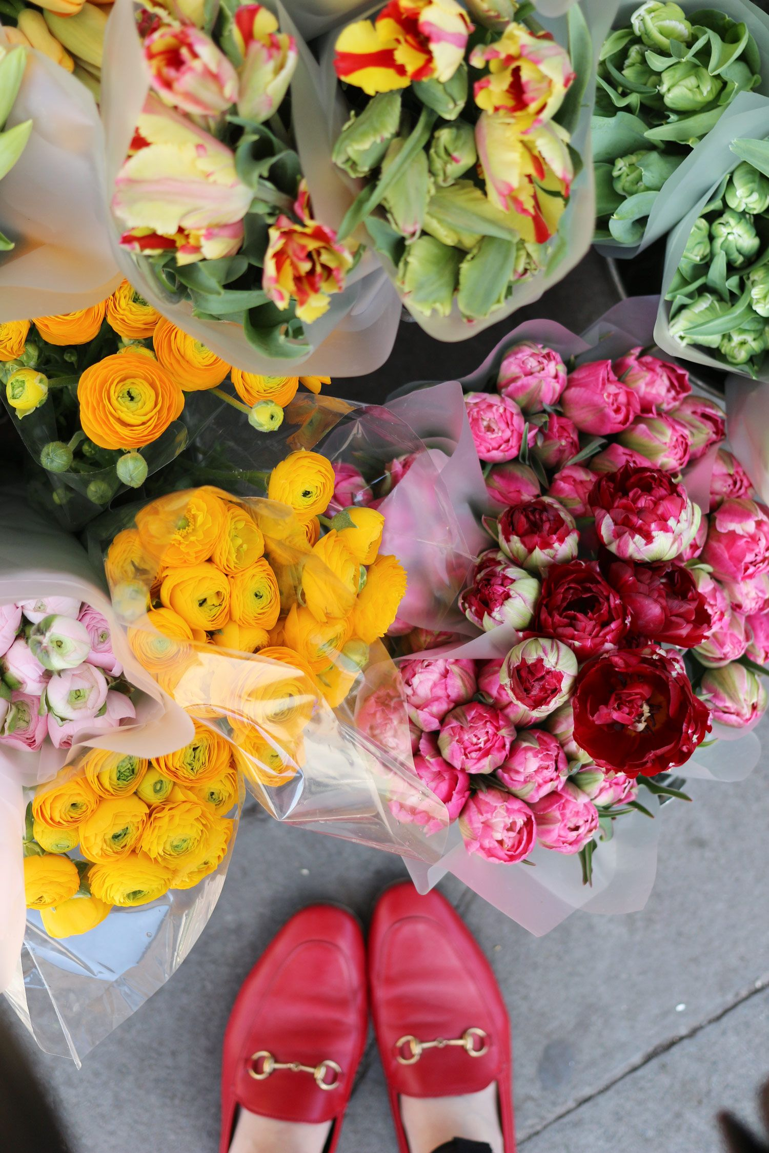 24 Hours in Edinburgh Beautiful flowers, Flower power