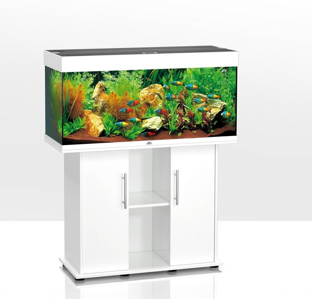 juwel-rio-240-aquarium--cabinet-white-home-delivery-Qb6.jpg (1024 ...