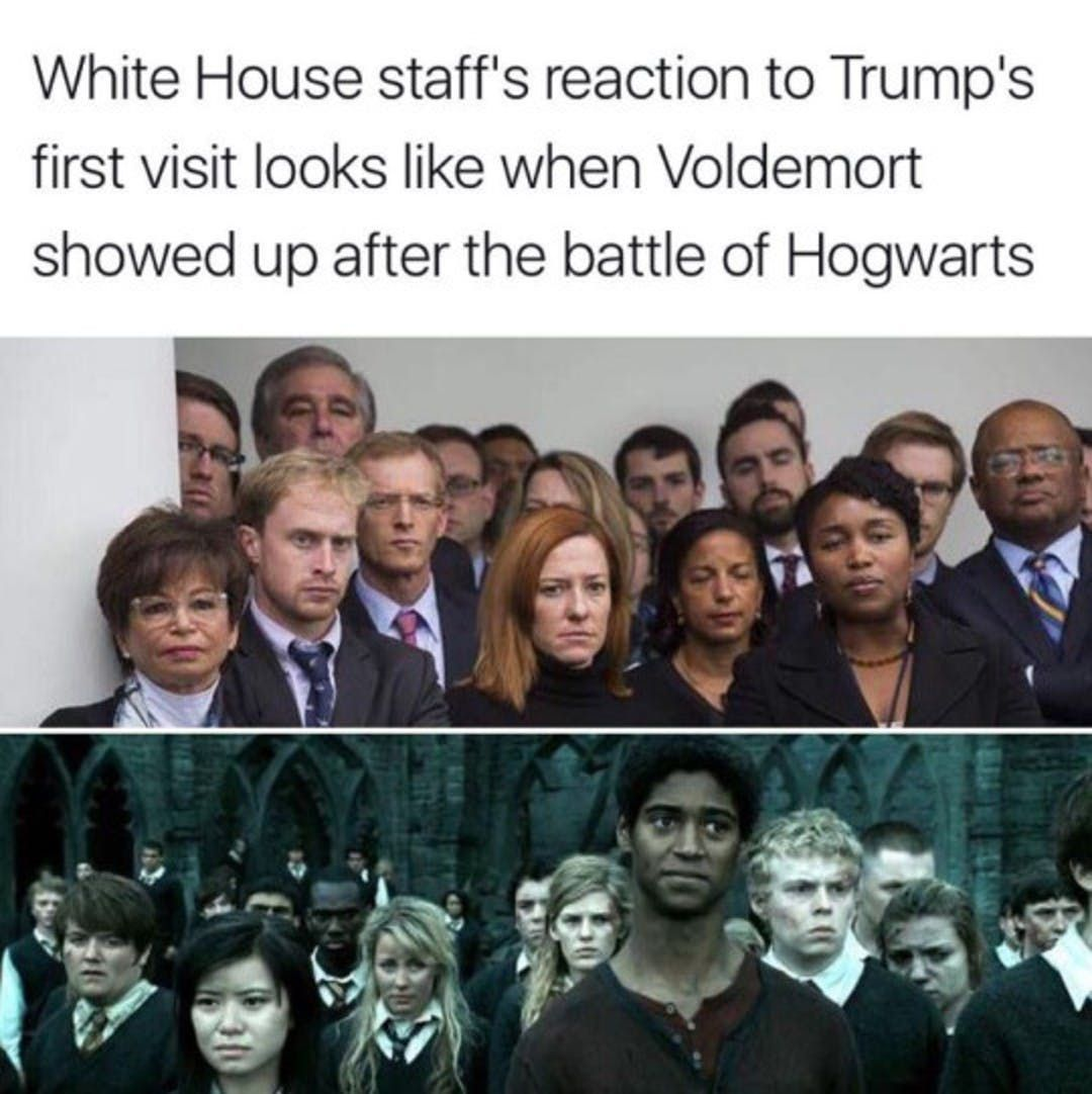 25 Of The Most Hilarious Harry Potter Memes Harry Potter Funny Harry Potter Memes Harry Potter