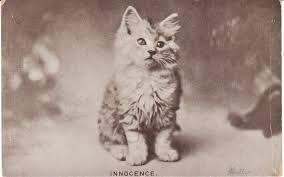 (Vintage postcard - 1906)