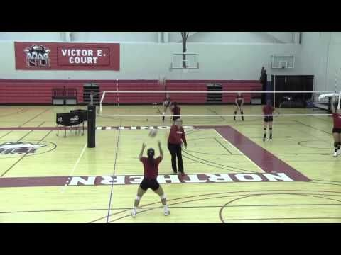 Minnesota Ball Handle Drills And Concepts Youtube Volleyball Training Volleyball Drills Basketball Workouts