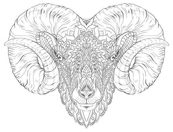 Rams Head Tattoo Buscar Con Google Zodiac But Mostly Aries Horse Head Tattoos Sheep Tattoo Tattoo Designs