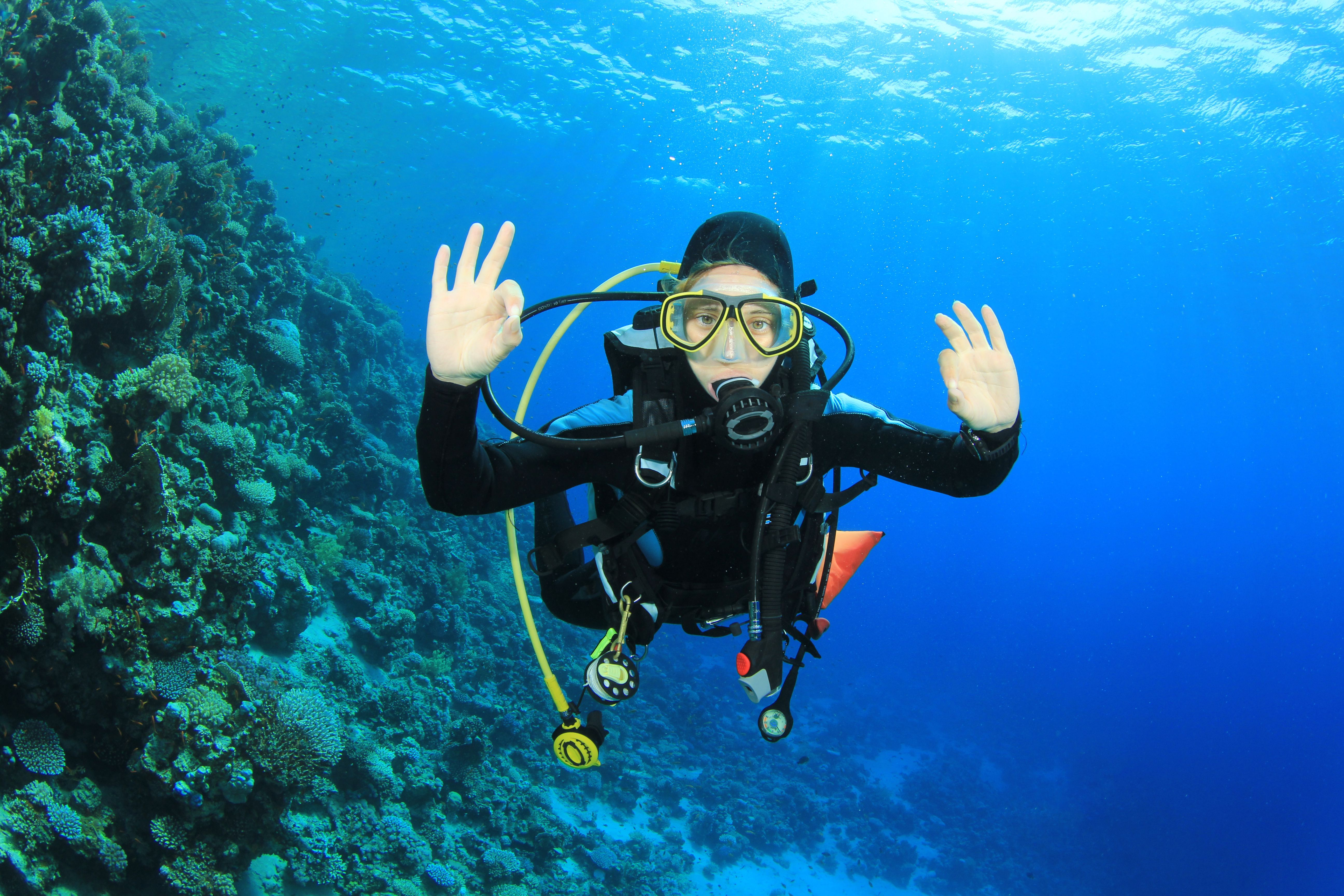 The discover scuba diving course can be counted towards open water diving school 1betcityfo Gallery