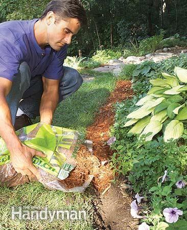Natural Mulch Landscape Edging Mulch Landscaping