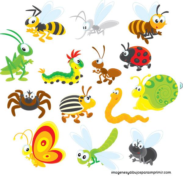 Imprimir insectos-Imagenes y dibujos para imprimir | dibujos para ...