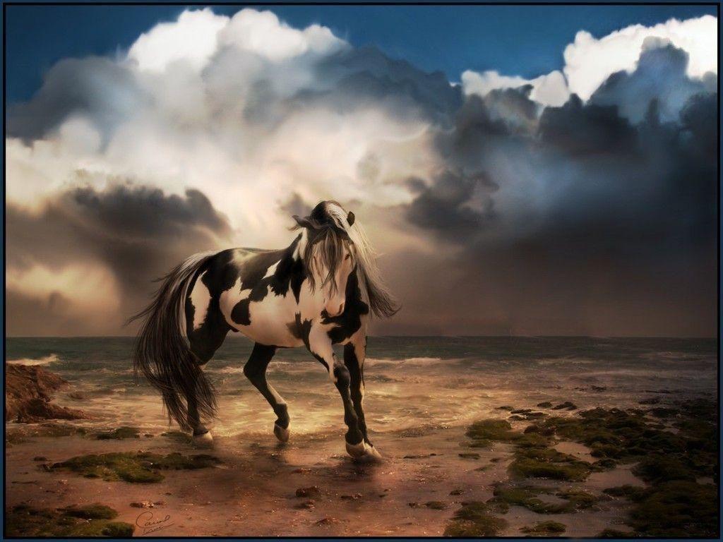Horse Desktop Wallpapers Wallpaper Cave Horses Horse Wallpaper
