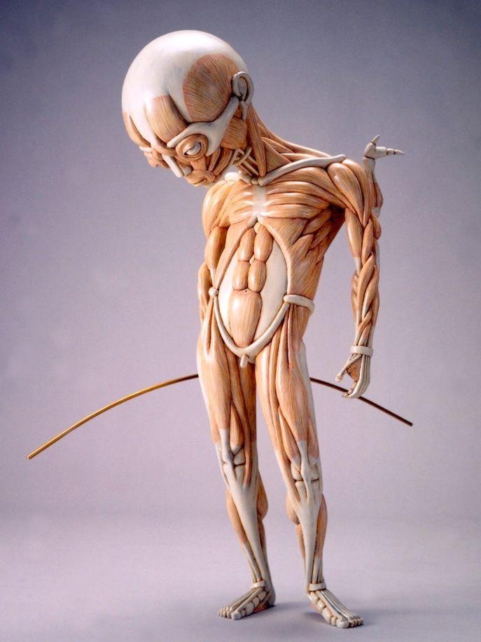Whimsical Anatomical Sculptures by Masao Kinoshita | Pinterest ...