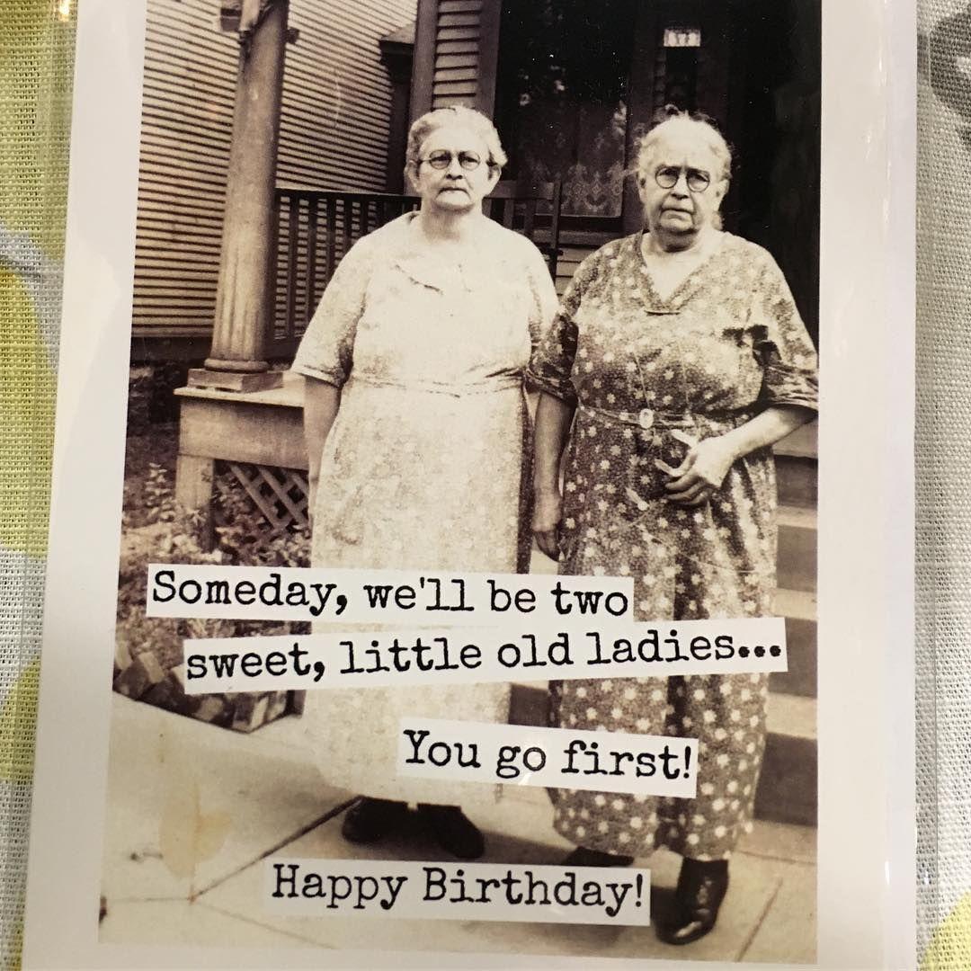 Altered Art Photo Birthday Greetings Funny Birthday Quotes Funny Birthday Humor
