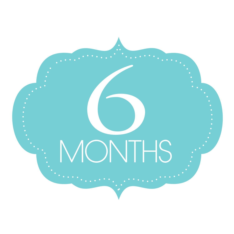 Nov 26 Happy 6 Month NOMADiversary to Us!