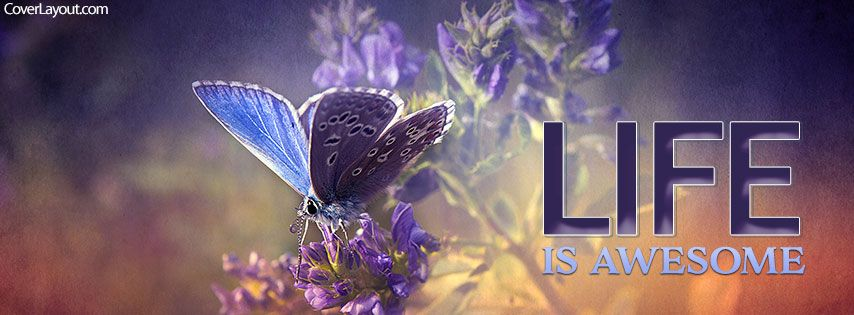 Life Is Awesome Facebook Cover Coverlayout Com Best