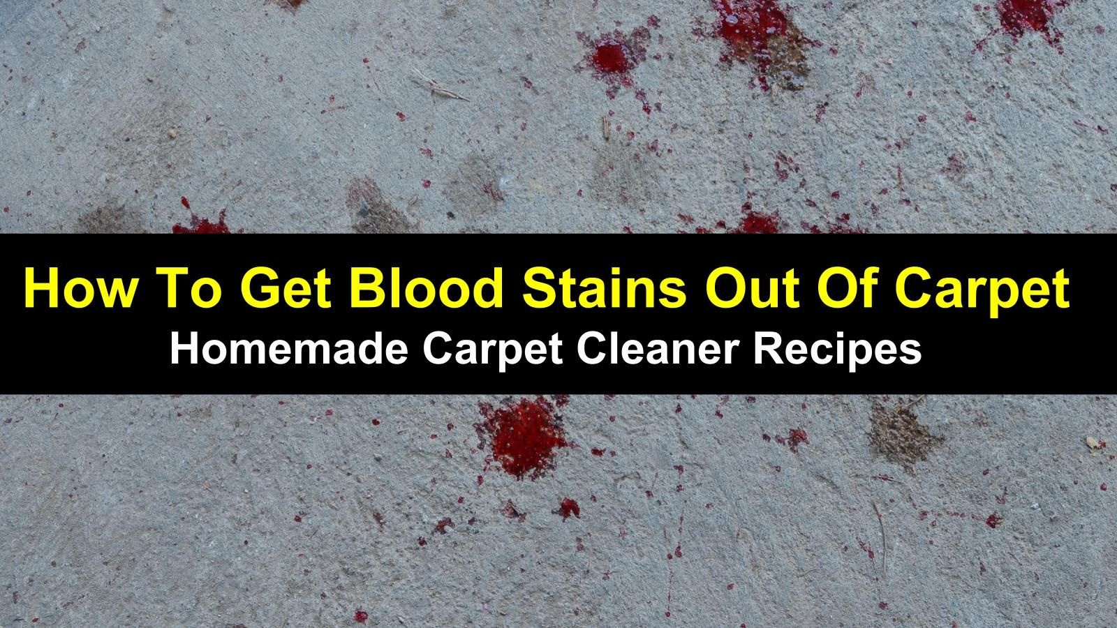 How To Get Blood Stains Out Of Carpet Homemade Carpet Cleaner Get Blood Stains Out Blood Out Of Carpet Carpet Cleaners