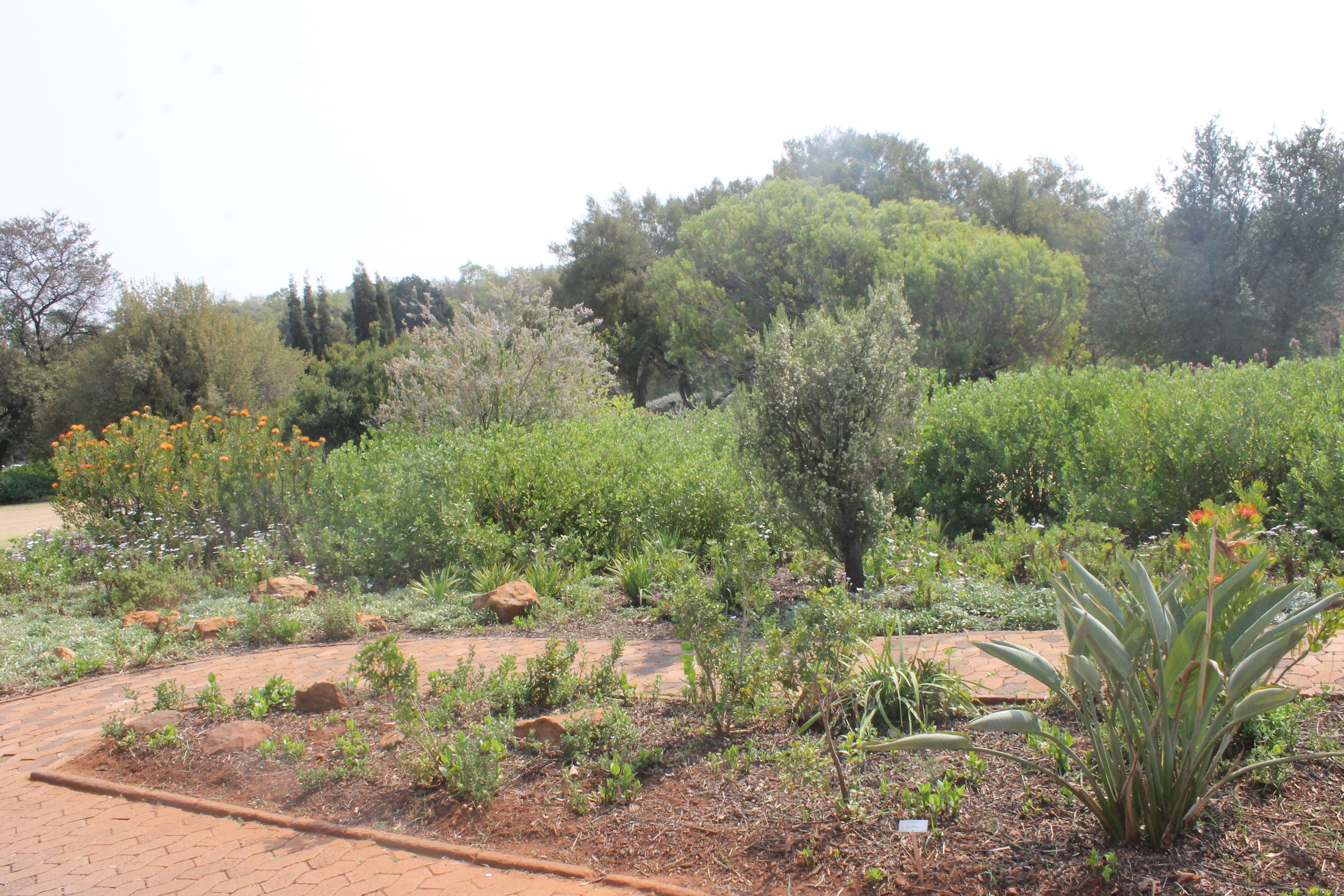 Flower Bed National Botanical Gardens Botanical Gardens Flower Beds