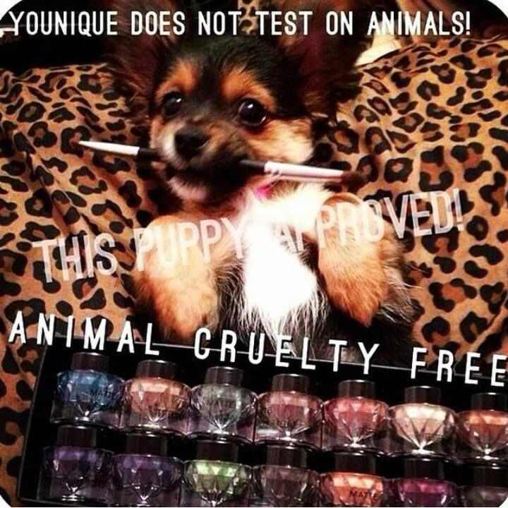 Younique is animal cruelty free <3 What's not to love?!  www.youniqueproducts.com/KathrynFlynn
