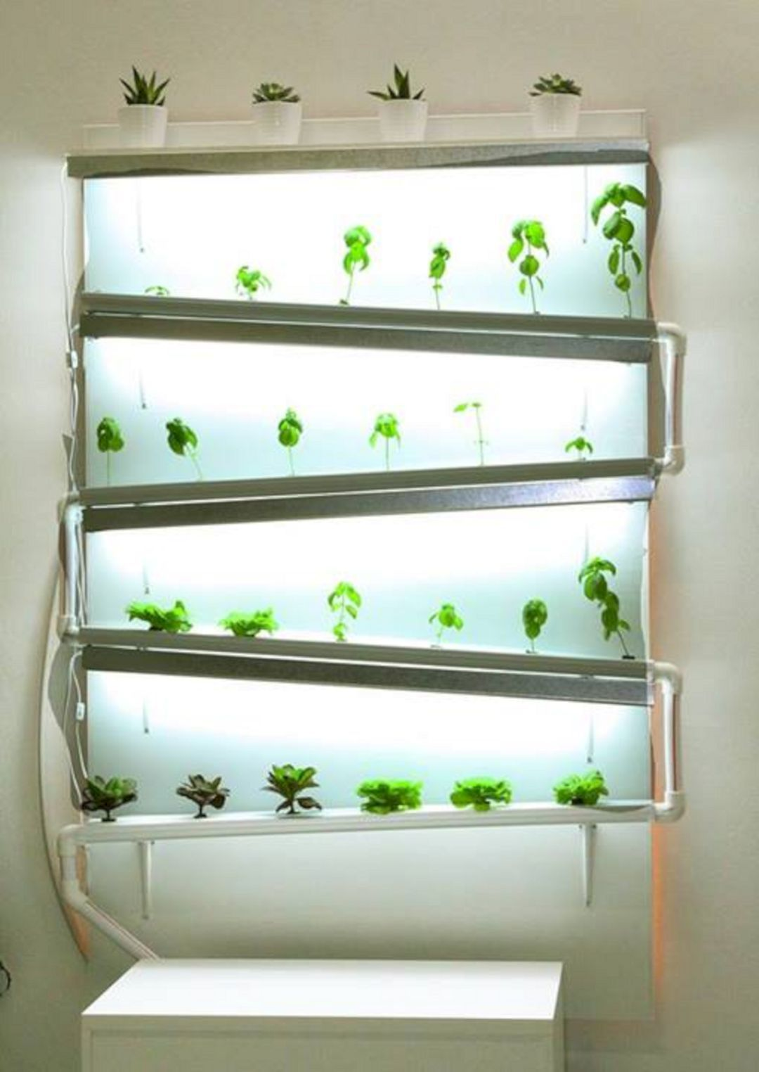 Healthy Life With Hydroponics Indoor Ideas 55 Best