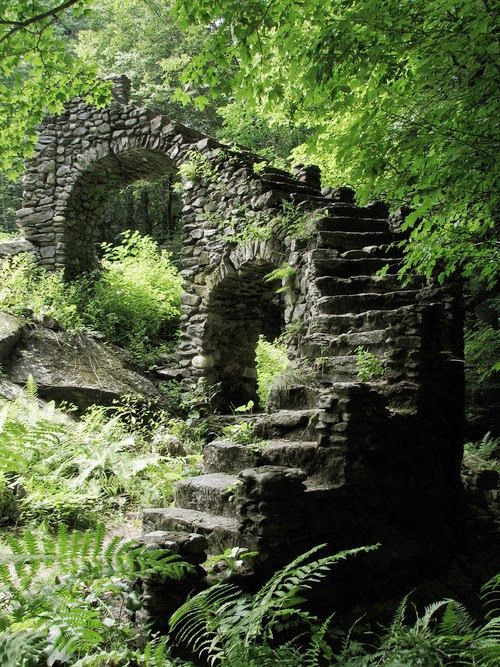 Photo of Photography, castle wall in the forest, high gloss, premium paper, signed