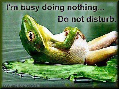 Im Busy Doing Nothing Funny Quotes Quote Lol Funny Quote Funny Quotes Humor Funny Quotes Funny Massage Quotes