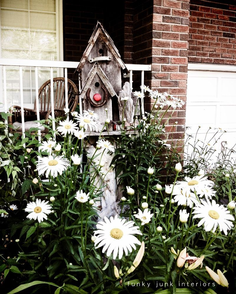 old wood birdhouses in a bed of daisies. Daisies are such a happy flower. Love!