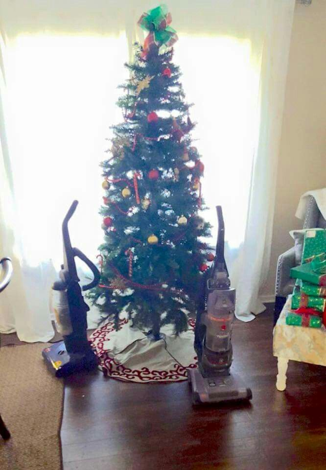 How to keep your animals away from the Christmas tree ...