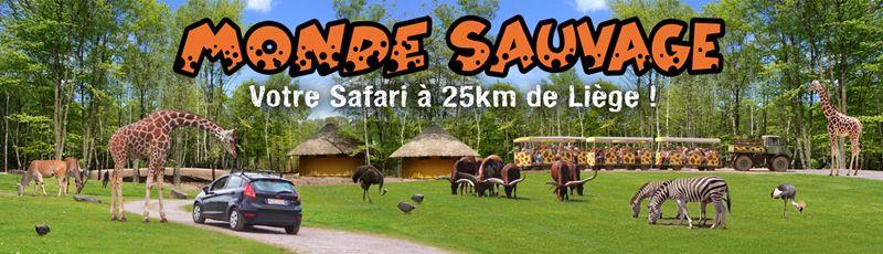 Le monde sauvage safari parc monde sauvage discover belgium pinterest - Le monde sauvage meubles ...