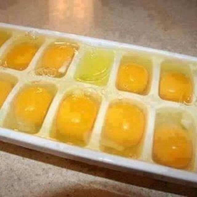 Frozen eggs?  Bloody clever