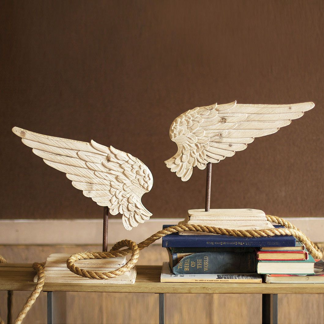 wings and books