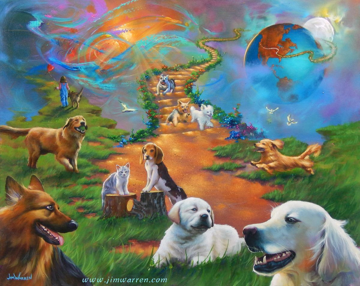 Картинки собака на радуге