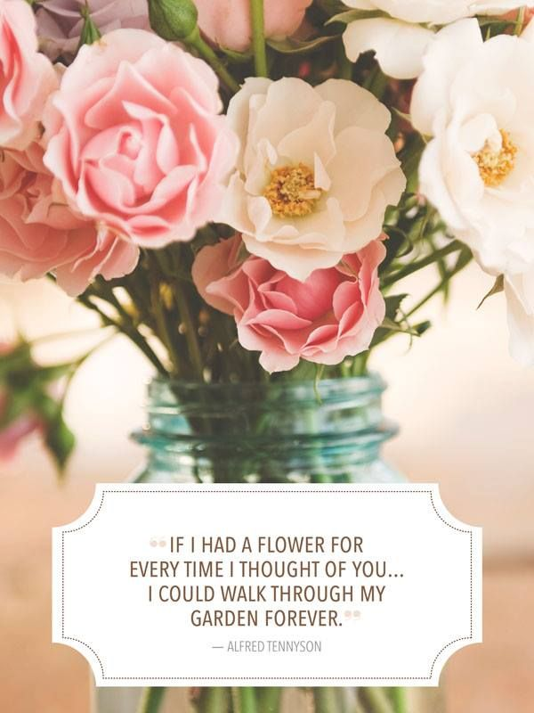 If I had a flower for every time I thought of you….I could ...