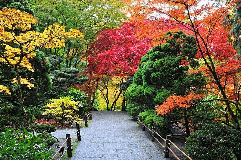 Os jardins de butchart um dos jardins mais lindos do for Jardines butchart