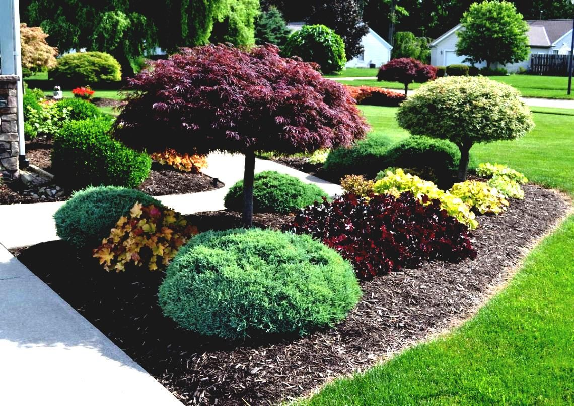 ideas front yard australia landscaping plans shrubs doors