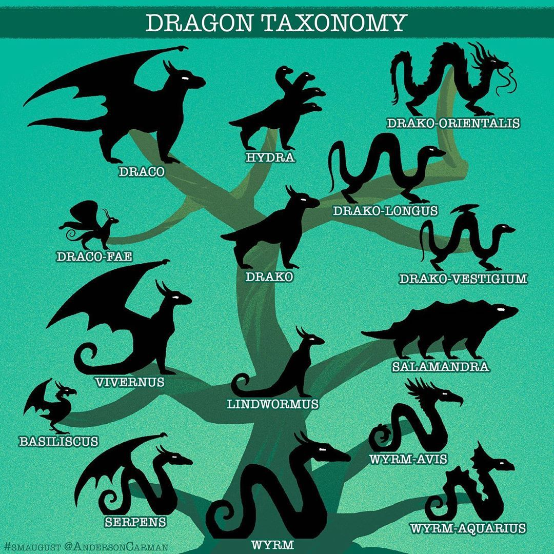 "6,580 Me gusta, 55 comentarios - Anderson Carman (@andersoncarman) en  Instagram: ""Here is a handy guide for all you dragon fans out the… in 2020  