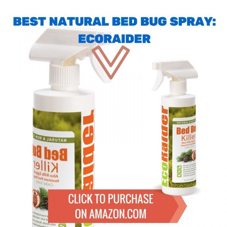 Best Natural Bed Bug Spray Ecoraider Bed Bug Spray Bed Bugs Bed Bug Bites