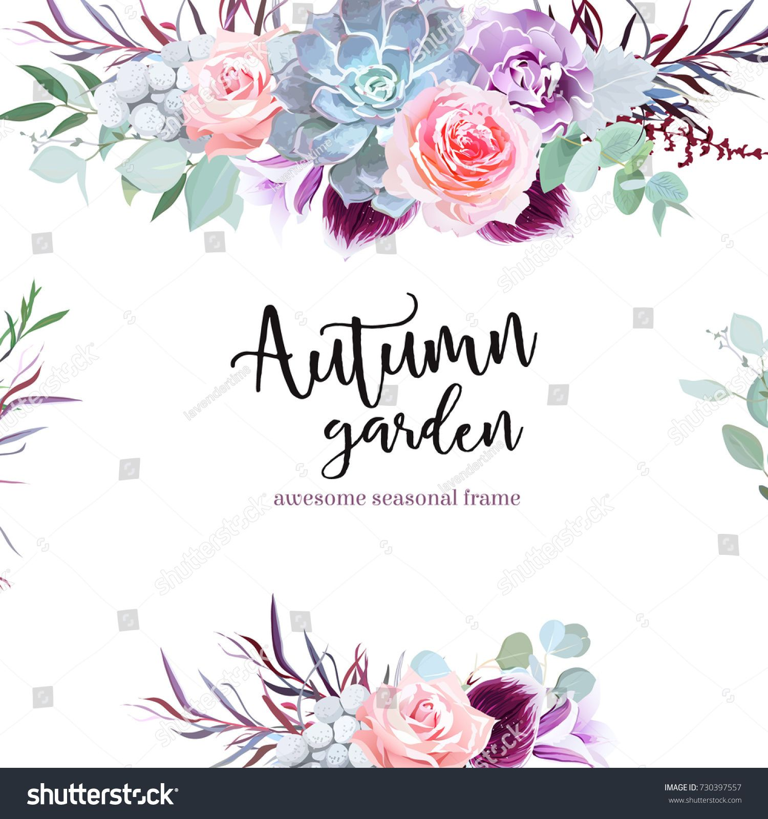 4715610135652 Stylish plum colored and pink flowers vector design card. Rose, purple  carnation, bell flower, succulent, eucalyptus, agonis, brunia. Floral  borders.