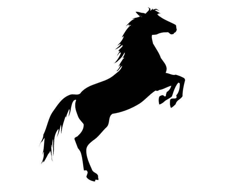 steigerend paard silhouet zoeken paard silhouet