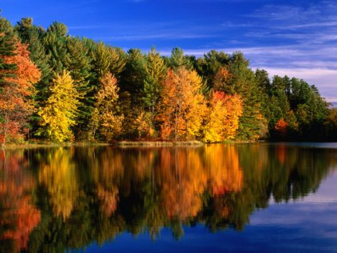 Autumn Trees in New Hampshire, New Hampshire, USA Photographic Print by Carol Polich at Art.co.uk