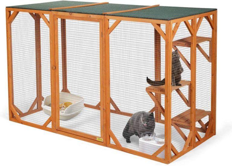 Catio Spaces Cat Enclosures Cat Runs Catios Amazon ガーデニングのアイデア アイデア