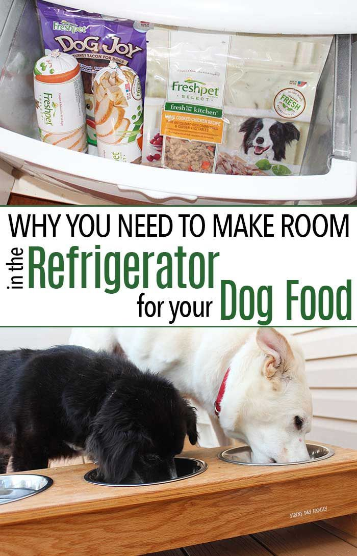 Why You Need To Make Room In The Refrigerator For Dog Food Dog