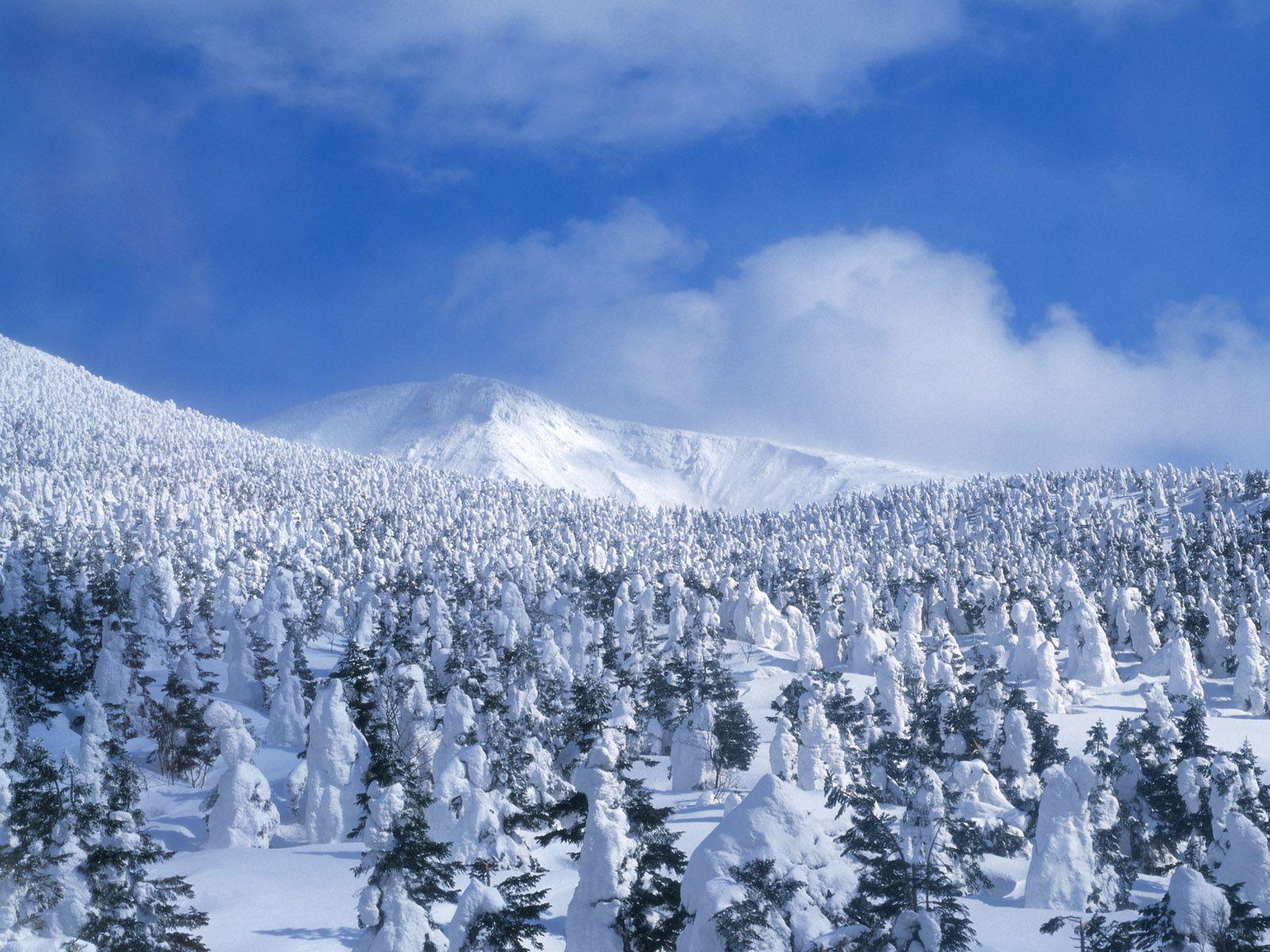 High Resolution Wallpaper Winter: Snow Scenes Desktop Background