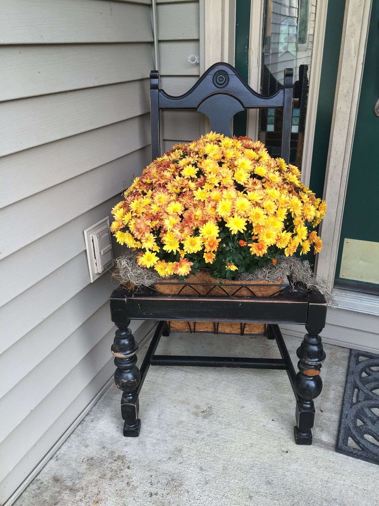 Salvaged chair, now an awesome plant chair with reusable wire basket ...