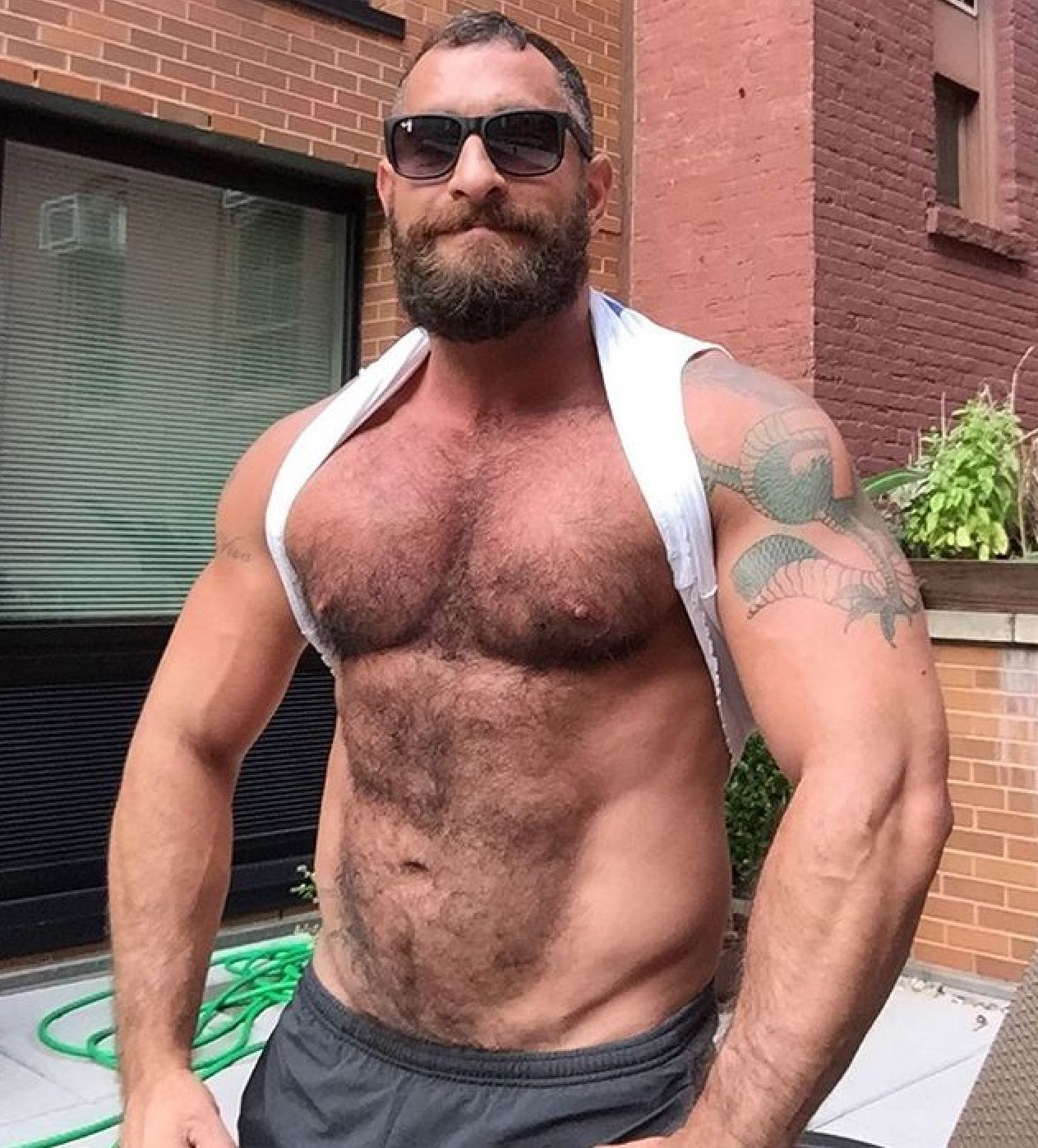 Hairy chest gay
