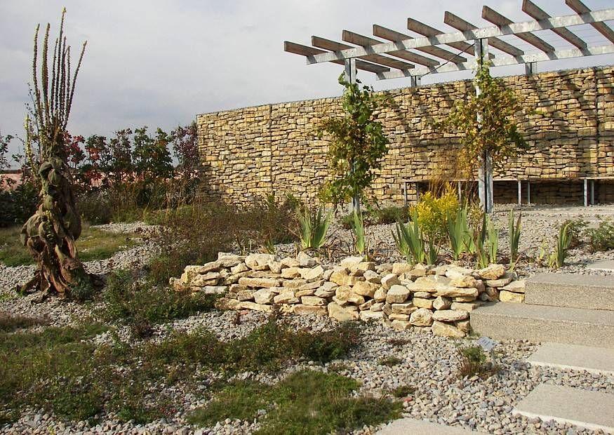 Gabione Mediterrane Pergola und Trockengarten Begriff auch als - steinmauer garten mediterran