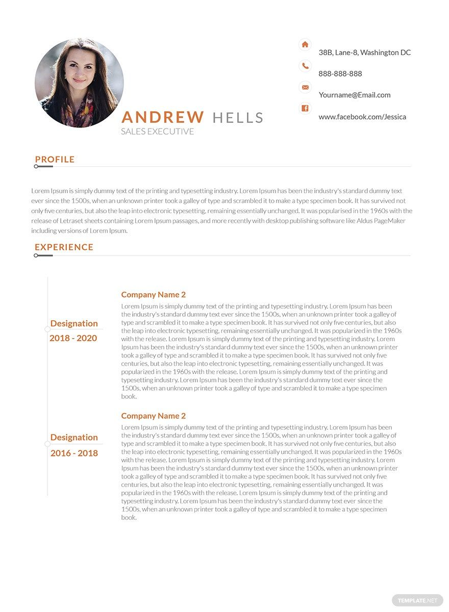 Free Sales Executive Resume Template in 2020 Executive